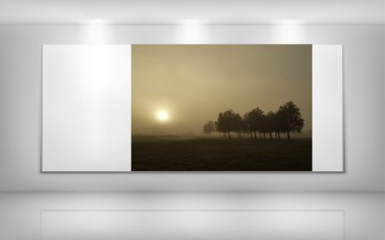 © series >  CLASSIC gallery - Dawn Mist