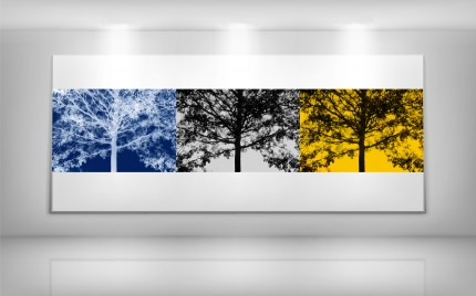 © series > LD ART gallery - NATURE Tree Triptych